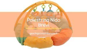 Palestrina Nido Multicolore a tema Foresta – Brevi