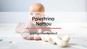Read more about the article Migliori Palestrine Nattou: Guida con Prezzi, Offerte ed Opinioni