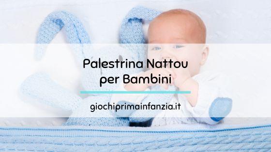 Palestrina Nattou: le Migliori 7