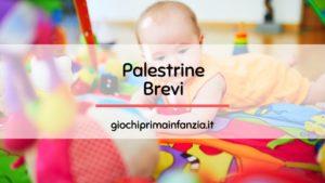 Read more about the article Migliori Palestrine Brevi: Guida Completa con Prezzi ed Opinioni